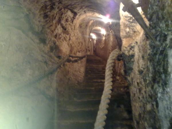 Vista desde le bodega subterránea del Lagar de Isilla