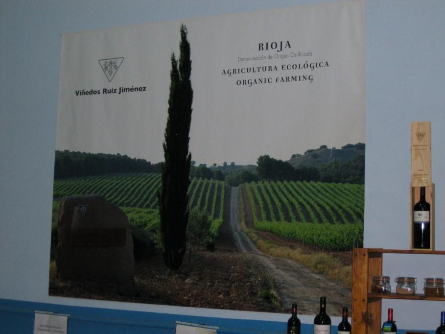 Cartel de los Viñedos Ruiz Jiménez