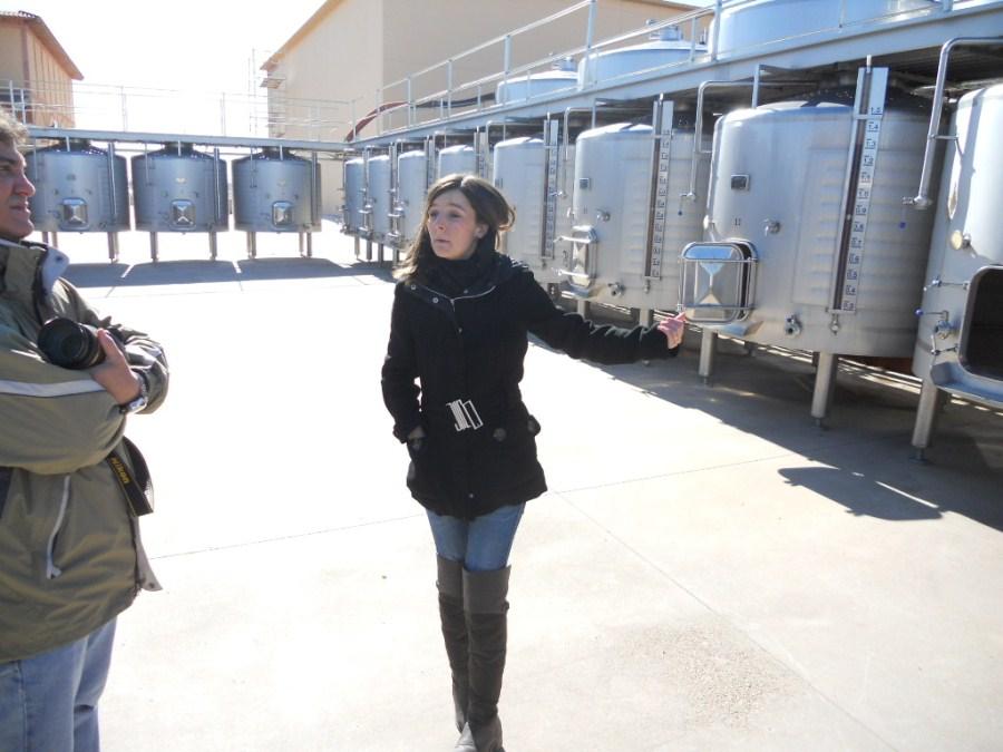 Depósitos de fermentación al aire libre