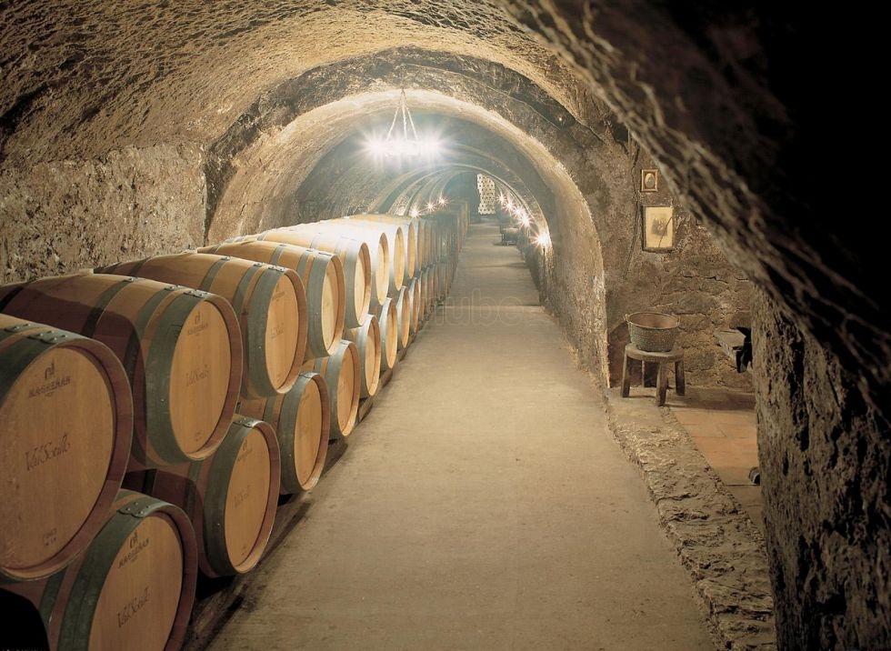 Vente con el Winebus a Bodegas Ismael Arroyo
